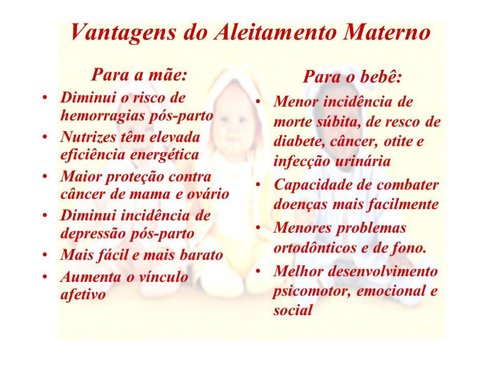 A Alimentação Materna Durante a Amamentação Mitos Verdades