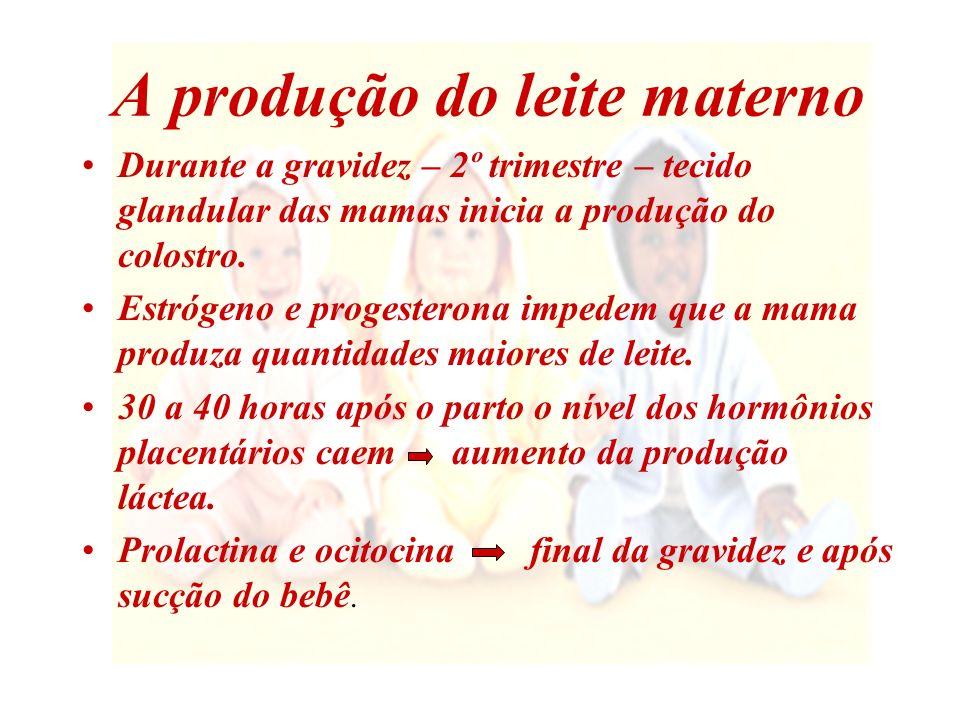 Prolactina Estimula os alvéolos a produzirem leite Pode fazer a mãe sentir-se relaxada Seus níveis devem ser mantidos altos par que os alvéolos produzam leite 20 min.