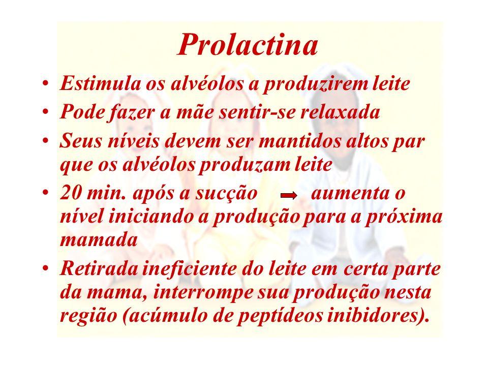 Como manter elevado o nível de prolactina Manter uma boa pega do bebê ao seio Não usar bicos Amamentar o bebê sempre que ele quiser Deixar que ele mame durante o tempo que desejar As mamadas noturnas aumentam a produção de prolactina.