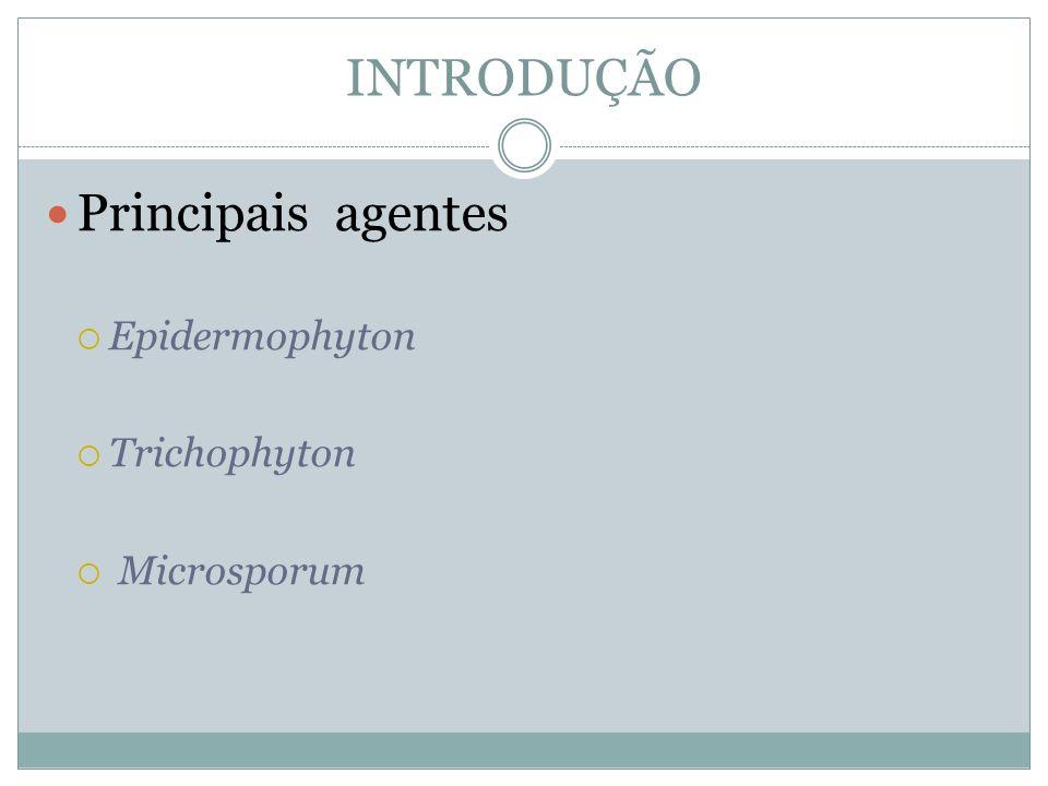 INTRODUÇÃO Principais agentes Epidermophyton Trichophyton Microsporum