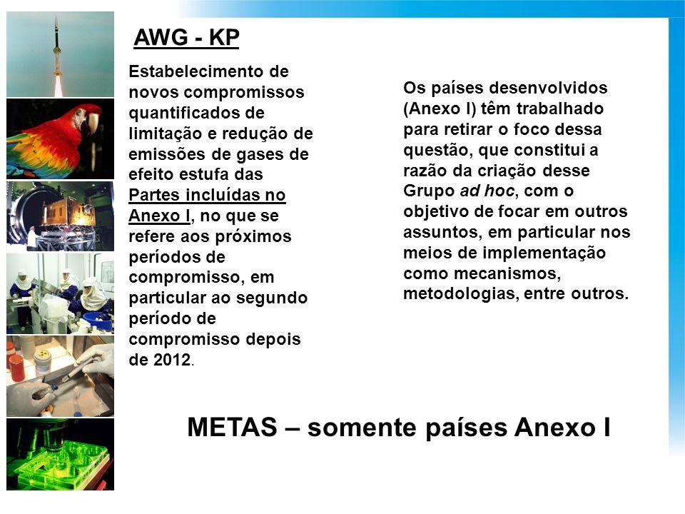 AWG - KP Estabelecimento de novos compromissos quantificados de limitação e redução de emissões de gases de efeito estufa das Partes incluídas no Anexo I, no que se refere aos próximos períodos de compromisso, em particular ao segundo período de compromisso depois de 2012.