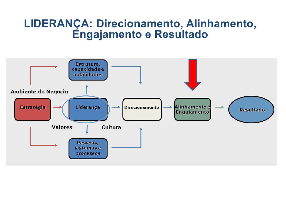 EstratégiaLiderança Direcionamento Resultado Estrutura, capacidade e habilidades Pessoas, sistemas e processos ValoresCultura LIDERANÇA: Direcionament
