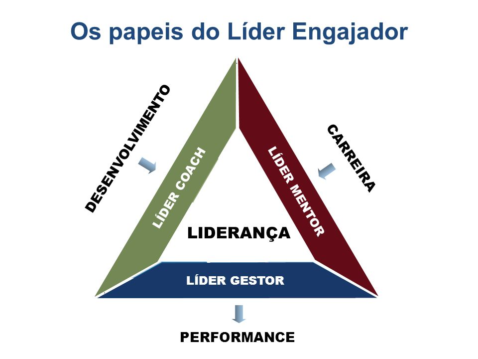 PERFORMANCE Self Management Attitude PerseveranceOpenness Self Awareness Self Control Self Assurance Adaptability LÍDER COACH LÍDER MENTOR LÍDER GESTO