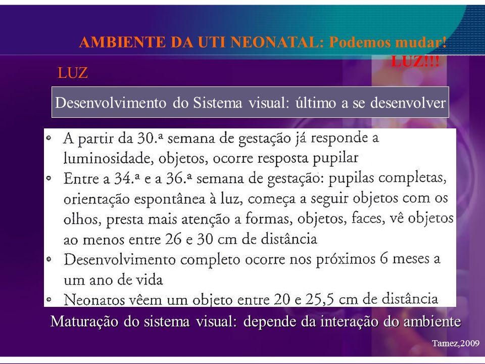 Desenvolvimento do Sistema visual: último a se desenvolver AMBIENTE DA UTI NEONATAL: Podemos mudar! LUZ!!! LUZ Tamez,2009 Maturação do sistema visual: