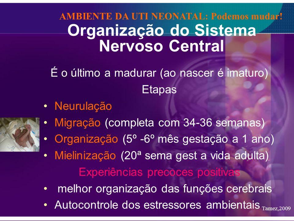 Organização do Sistema Nervoso Central É o último a madurar (ao nascer é imaturo) Etapas Neurulação Migração (completa com 34-36 semanas) Organização