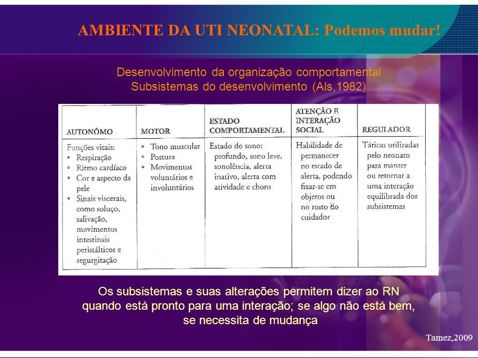 AMBIENTE DA UTI NEONATAL: Podemos mudar! Desenvolvimento da organização comportamental Subsistemas do desenvolvimento (Als,1982) Os subsistemas e suas