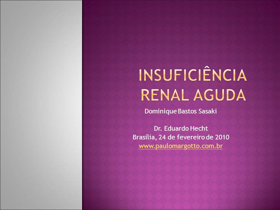 Dominique Bastos Sasaki Dr. Eduardo Hecht Brasília, 24 de fevereiro de 2010 www.paulomargotto.com.br