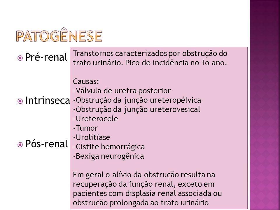 Pré-renal Intrínseca Pós-renal Transtornos caracterizados por obstrução do trato urinário. Pico de incidência no 1o ano. Causas: -Válvula de uretra po