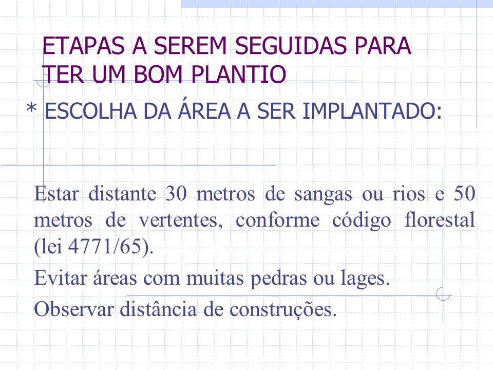 ETAPAS A SEREM SEGUIDAS PARA TER UM BOM PLANTIO * ESCOLHA DA ÁREA A SER IMPLANTADO: Estar distante 30 metros de sangas ou rios e 50 metros de vertentes, conforme código florestal (lei 4771/65).