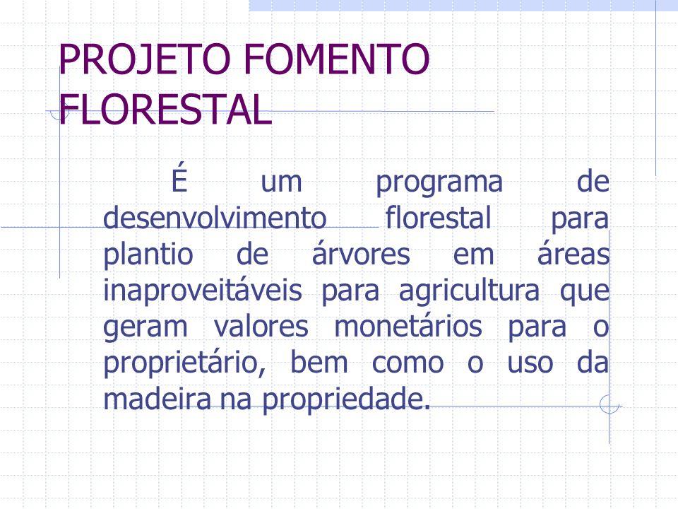 PROJETO FOMENTO FLORESTAL É um programa de desenvolvimento florestal para plantio de árvores em áreas inaproveitáveis para agricultura que geram valores monetários para o proprietário, bem como o uso da madeira na propriedade.