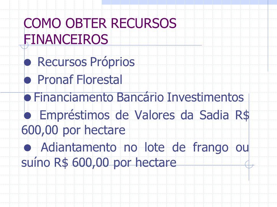 COMO OBTER RECURSOS FINANCEIROS Recursos Próprios Pronaf Florestal Financiamento Bancário Investimentos Empréstimos de Valores da Sadia R$ 600,00 por hectare Adiantamento no lote de frango ou suíno R$ 600,00 por hectare