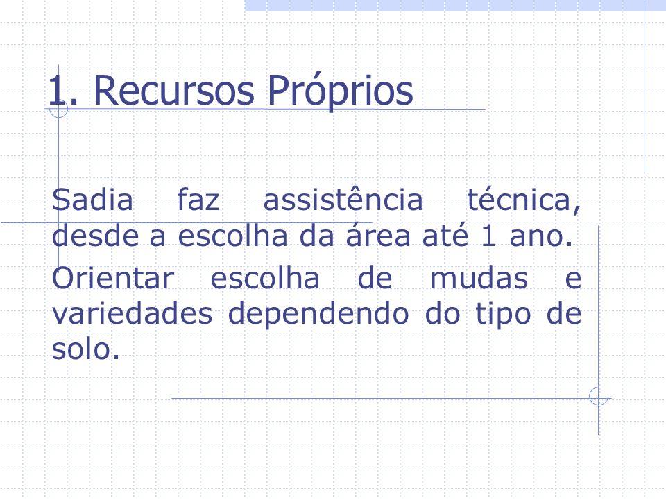 1.Recursos Próprios Sadia faz assistência técnica, desde a escolha da área até 1 ano.