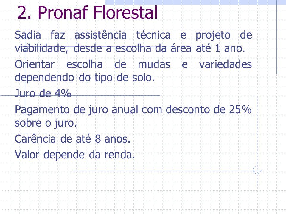 2. Pronaf Florestal Sadia faz assistência técnica e projeto de viabilidade, desde a escolha da área até 1 ano. Orientar escolha de mudas e variedades