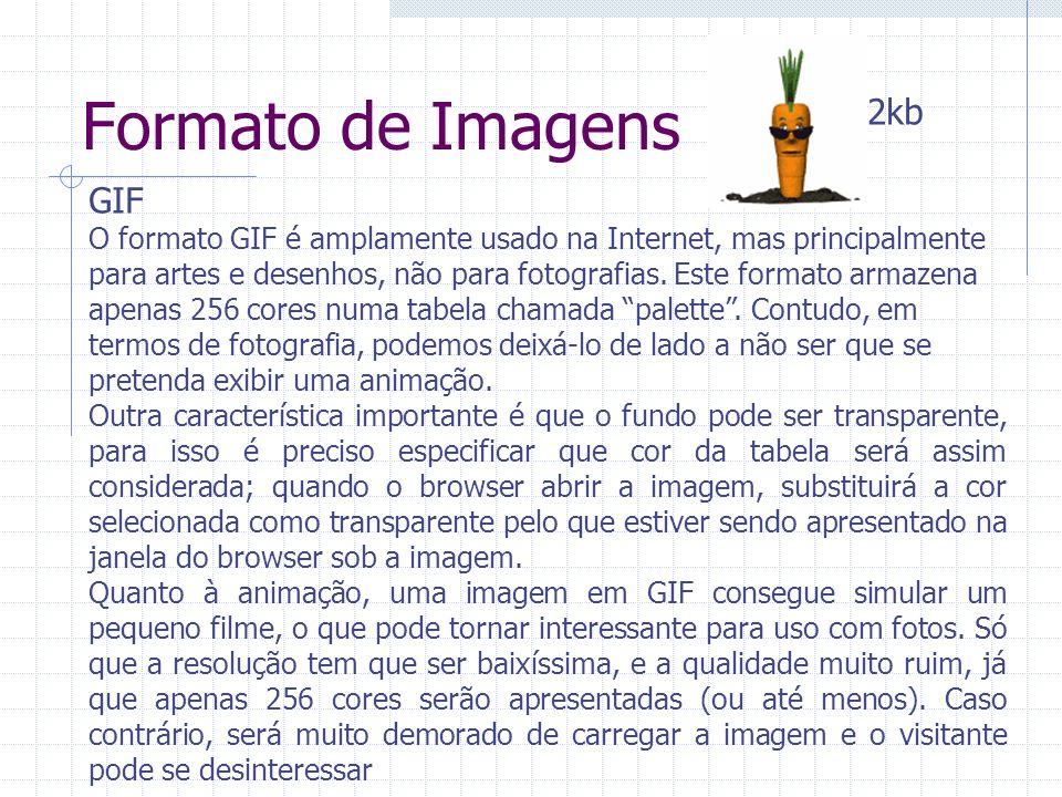 Formato de Imagens GIF O formato GIF é amplamente usado na Internet, mas principalmente para artes e desenhos, não para fotografias. Este formato arma