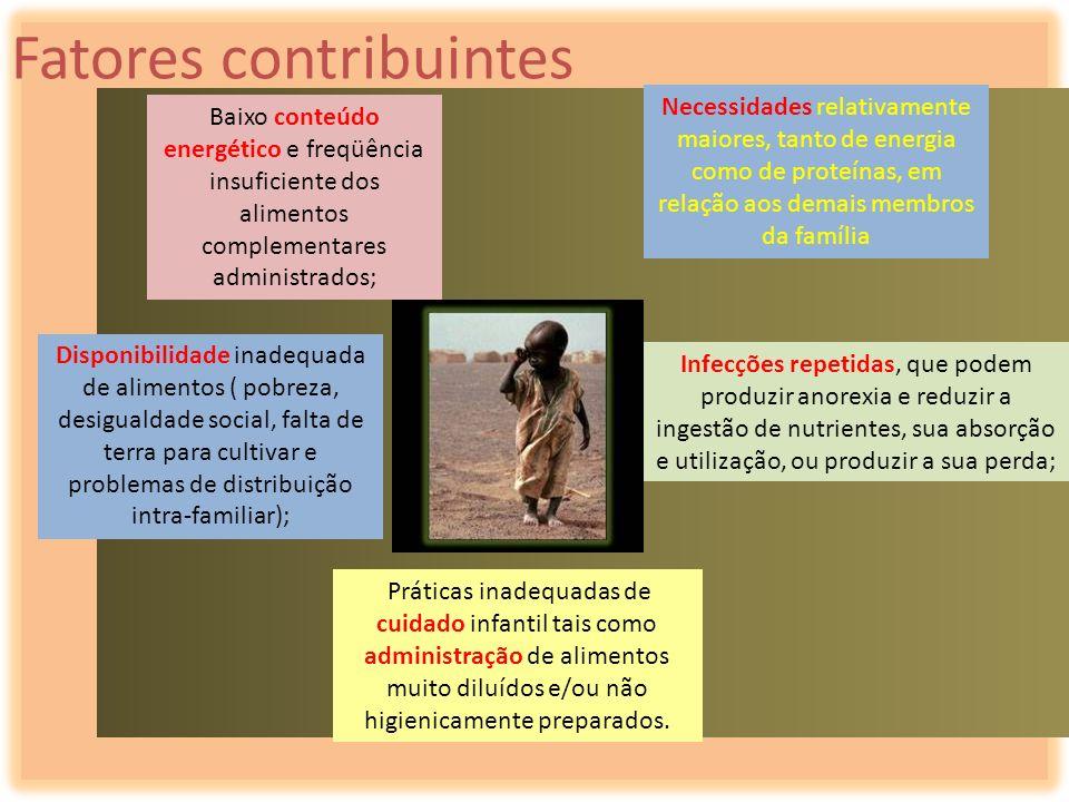 Fatores contribuintes Necessidades relativamente maiores, tanto de energia como de proteínas, em relação aos demais membros da família Baixo conteúdo