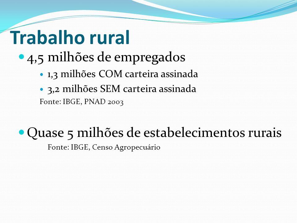 Trabalho rural 4,5 milhões de empregados 1,3 milhões COM carteira assinada 3,2 milhões SEM carteira assinada Fonte: IBGE, PNAD 2003 Quase 5 milhões de