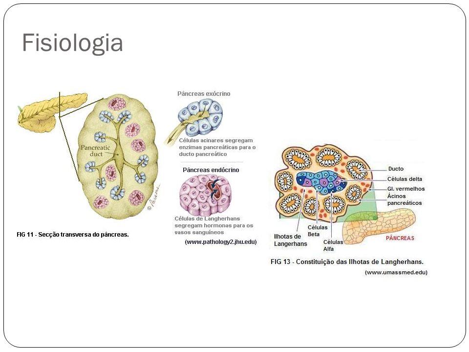 Patogenia Tripsinogênio catiônico auto-ativado em tripsina em locais não necessariamente sensíveis de forma descontrolada autodigestão do pâncreas Obs.: O inibidor da tripsina atua como estabilizador para evitar auto-ativação não-controlada da tripsina.