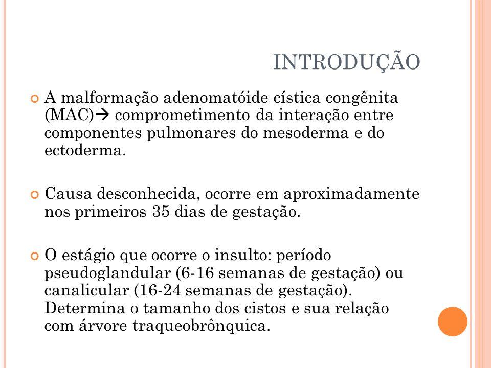 INTRODUÇÃO A malformação adenomatóide cística congênita (MAC) comprometimento da interação entre componentes pulmonares do mesoderma e do ectoderma. C