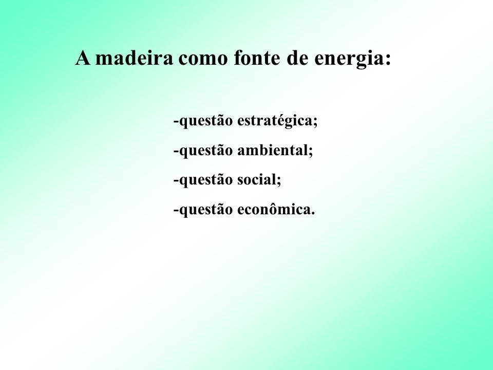 A biomassa pode ser facilmente a 2 a fonte de energia do Brasil Energia da Biomassa no Brasil e no Mundo Biomassa produzindo energia no mundo : 1,6 bi