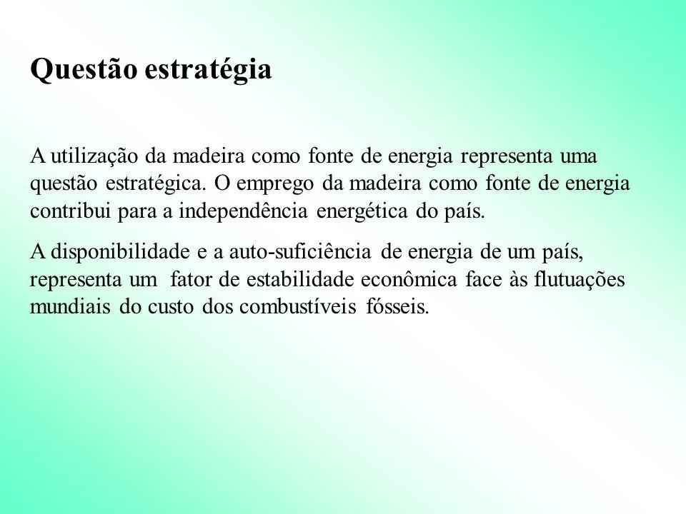 A madeira como fonte de energia: -questão estratégica; -questão ambiental; -questão social; -questão econômica.