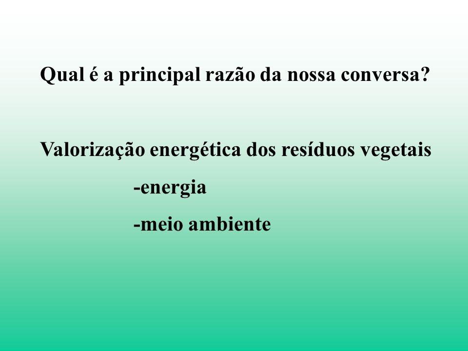 Resíduos vegetais como fonte de energia Waldir Ferreira Quirino, PhD Valorização Energética de Resíduos Analista Ambiental – LPF/IBAMA www.waldir@lpf.