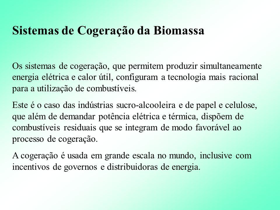 Proteção ambiental A utilização da madeira como fonte de energia em substituição de combustíveis fósseis na indústria, limita o crescimento do efeito