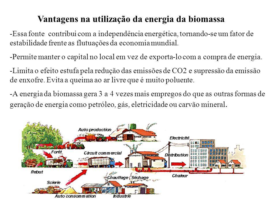 Sistemas de Cogeração da Biomassa Os sistemas de cogeração, que permitem produzir simultaneamente energia elétrica e calor útil, configuram a tecnolog