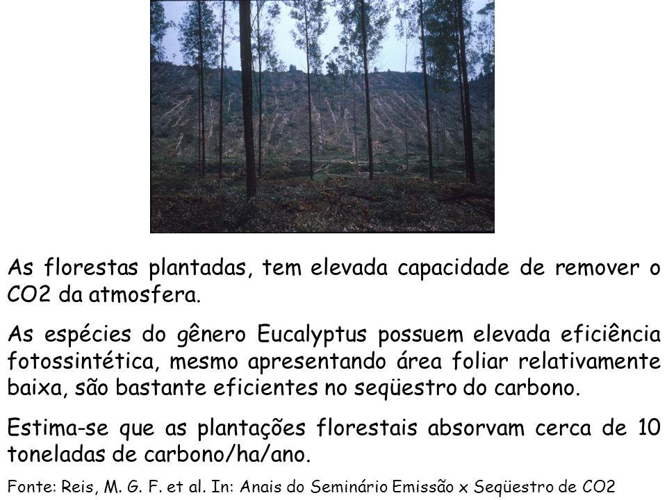 A área estimada de plantações florestais no mundo é de 187 milhões de hectares, representando 5% da área florestal global. -(62%) localiza-se no conti