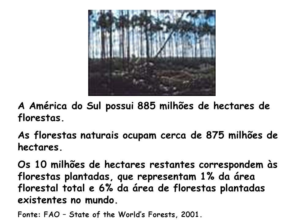 As florestas plantadas, tem elevada capacidade de remover o CO2 da atmosfera. As espécies do gênero Eucalyptus possuem elevada eficiência fotossintéti
