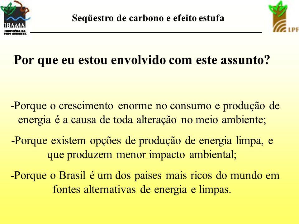 Qual é a principal razão da nossa conversa? Valorização energética dos resíduos vegetais -energia -meio ambiente
