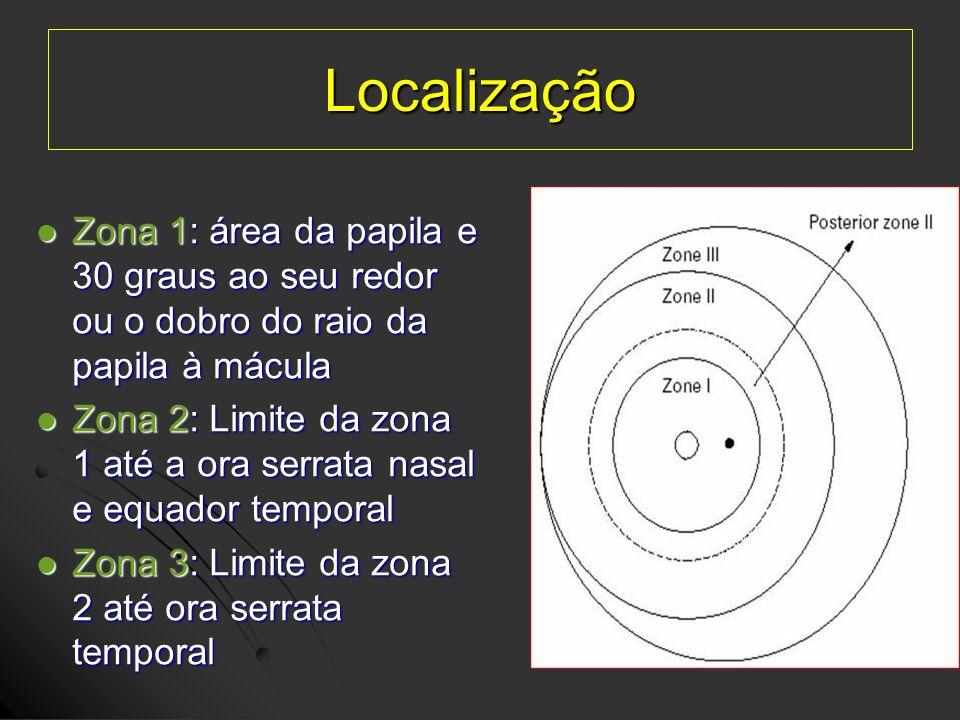 Localização Zona 1: área da papila e 30 graus ao seu redor ou o dobro do raio da papila à mácula Zona 1: área da papila e 30 graus ao seu redor ou o d