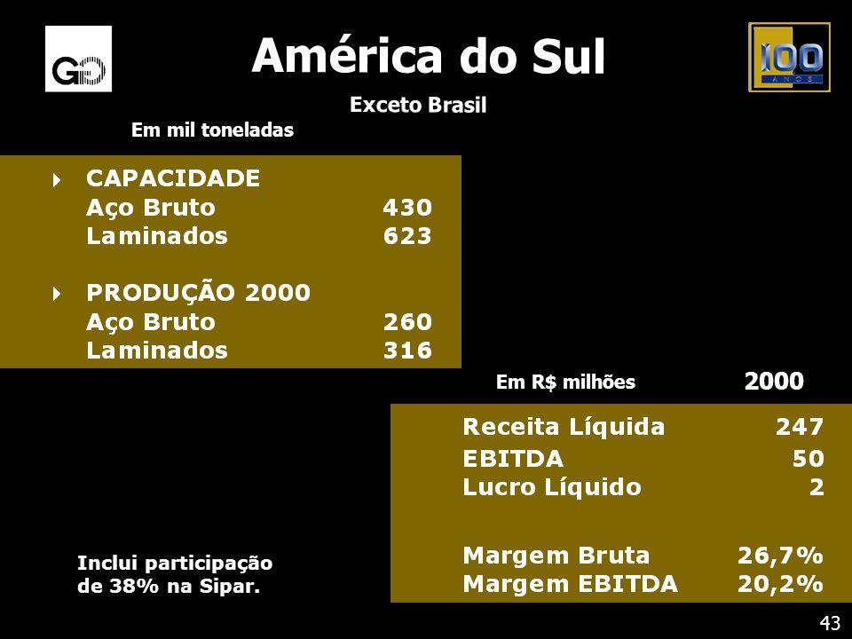 Inclui participação de 38% na Sipar. Em mil toneladas América do Sul Exceto Brasil 43 Em R$ milhões 2000