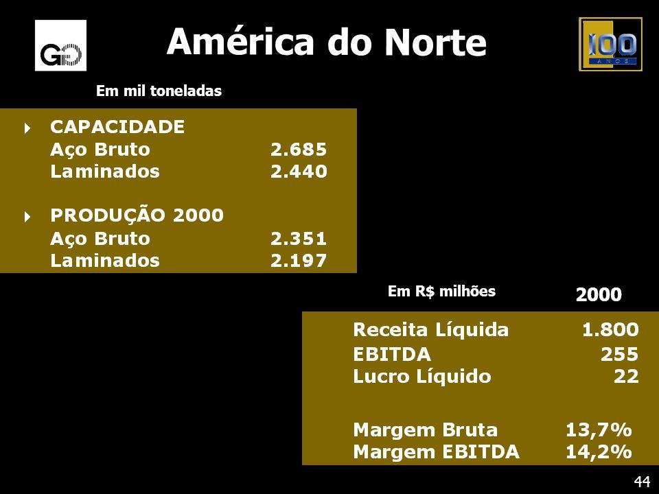 América do Norte Em mil toneladas 44 Em R$ milhões 2000