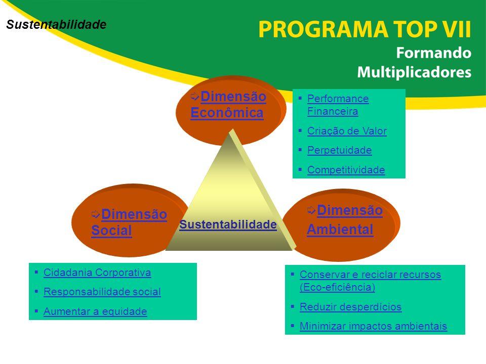 íDimensão Econômica íDimensão Ambiental íDimensão Social Sustentabilidade Cidadania Corporativa Responsabilidade social Aumentar a equidade Conservar