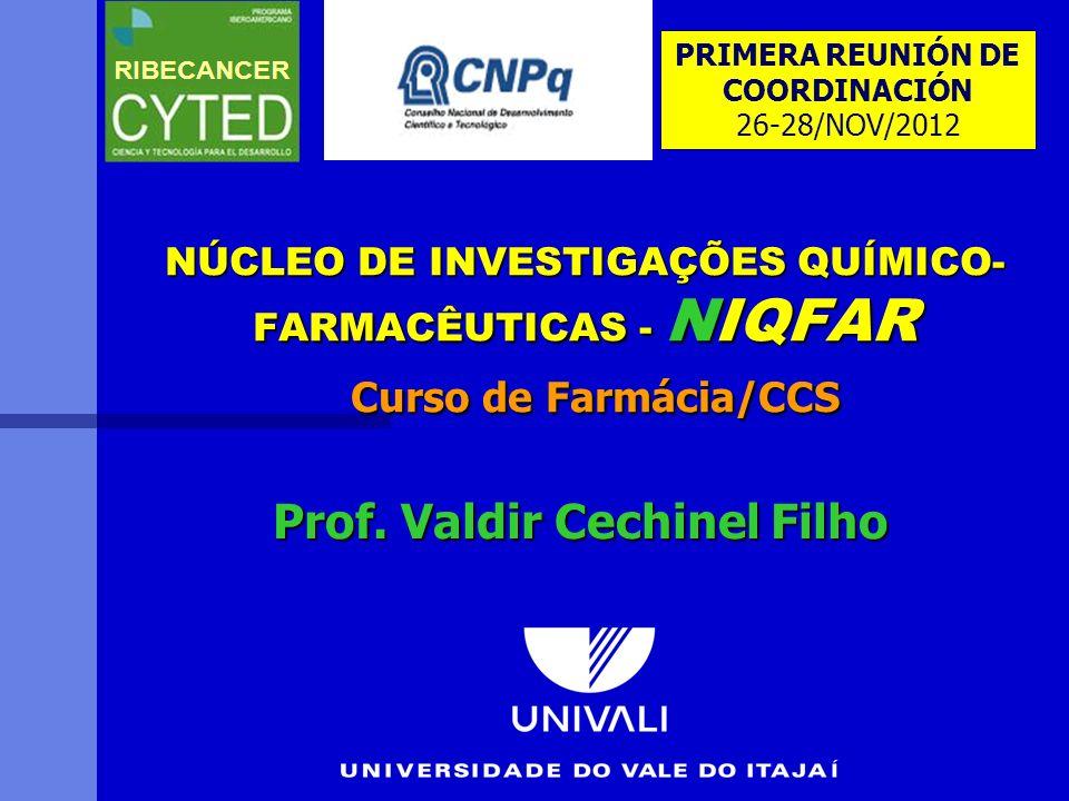 NÚCLEO DE INVESTIGAÇÕES QUÍMICO- FARMACÊUTICAS - NIQFAR Curso de Farmácia/CCS Prof. Valdir Cechinel Filho PRIMERA REUNIÓN DE COORDINACIÓN 26-28/NOV/20
