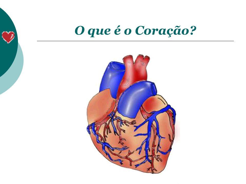 Órgão muscular localizado sob o osso esterno Tamanho aproximado do punho fechado de um adulto Função: bombear o sangue para todas as regiões do corpo, levando assim nutrientes para as células.