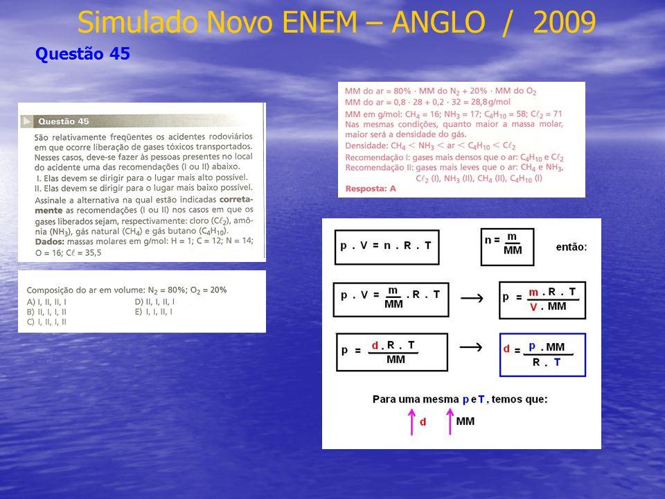 Simulado Novo ENEM – ANGLO / 2009 Questão 45