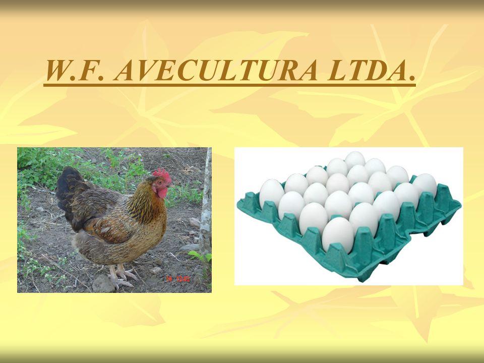 W.F. AVECULTURA LTDA.