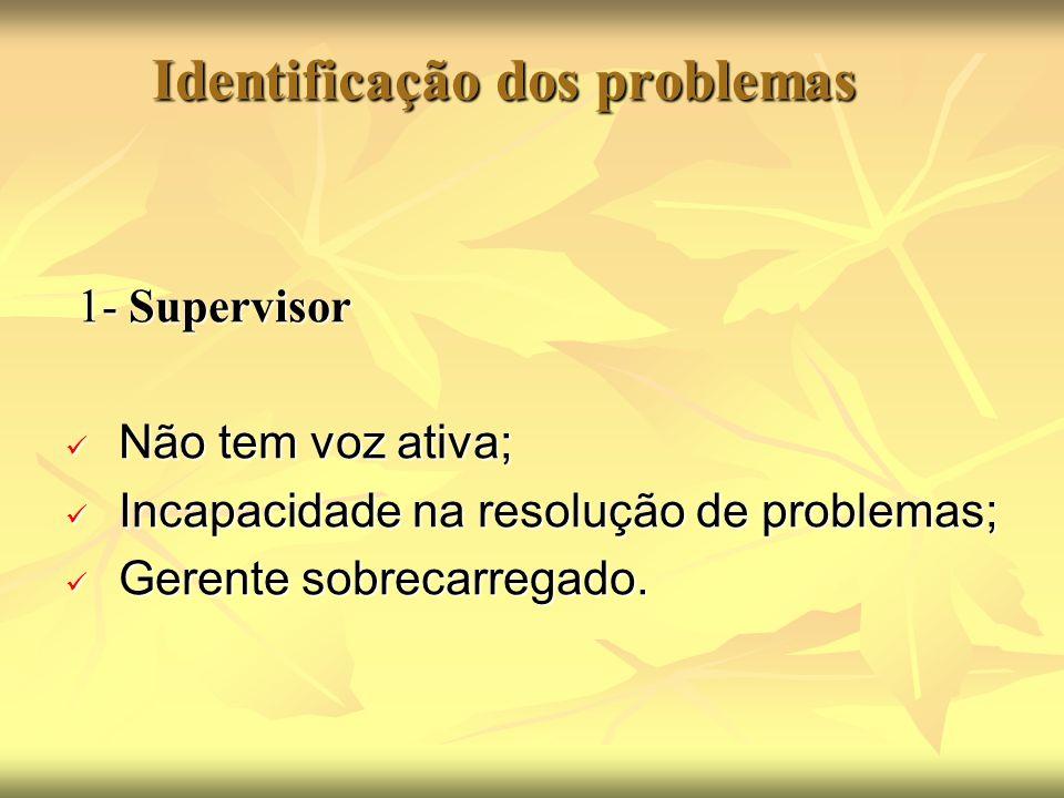 Identificação dos problemas 1- Supervisor 1- Supervisor Não tem voz ativa; Não tem voz ativa; Incapacidade na resolução de problemas; Incapacidade na resolução de problemas; Gerente sobrecarregado.