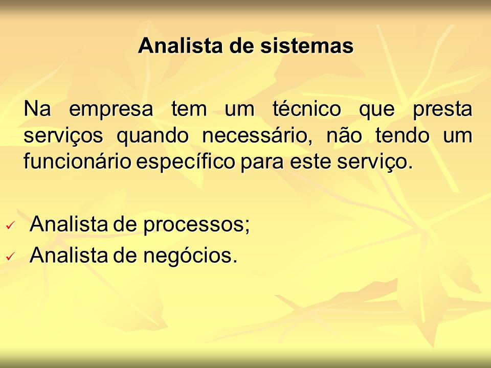 Analista de sistemas Analista de sistemas Na empresa tem um técnico que presta serviços quando necessário, não tendo um funcionário específico para este serviço.