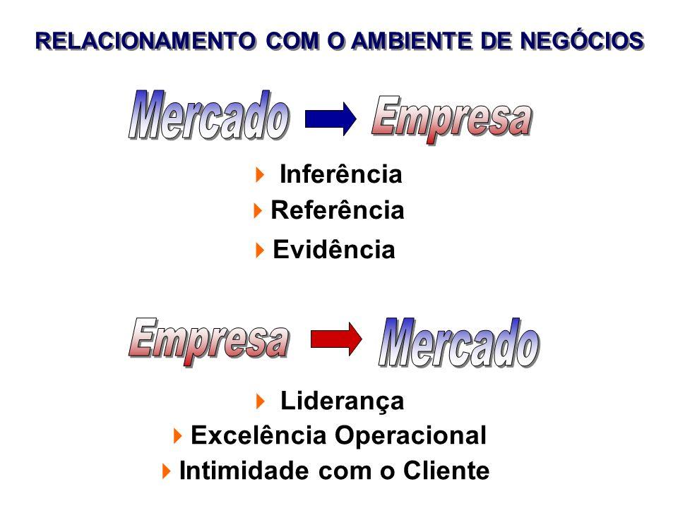 RELACIONAMENTO COM O AMBIENTE DE NEGÓCIOS Inferência Referência Evidência Liderança Excelência Operacional Intimidade com o Cliente