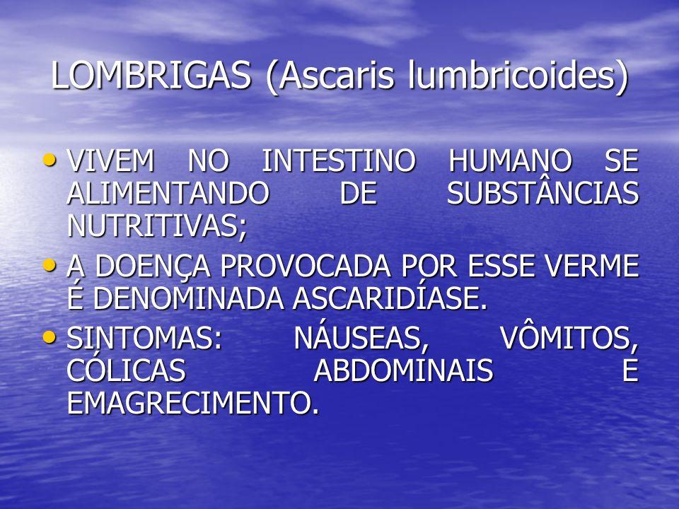 LOMBRIGAS (Ascaris lumbricoides) VIVEM NO INTESTINO HUMANO SE ALIMENTANDO DE SUBSTÂNCIAS NUTRITIVAS; VIVEM NO INTESTINO HUMANO SE ALIMENTANDO DE SUBST