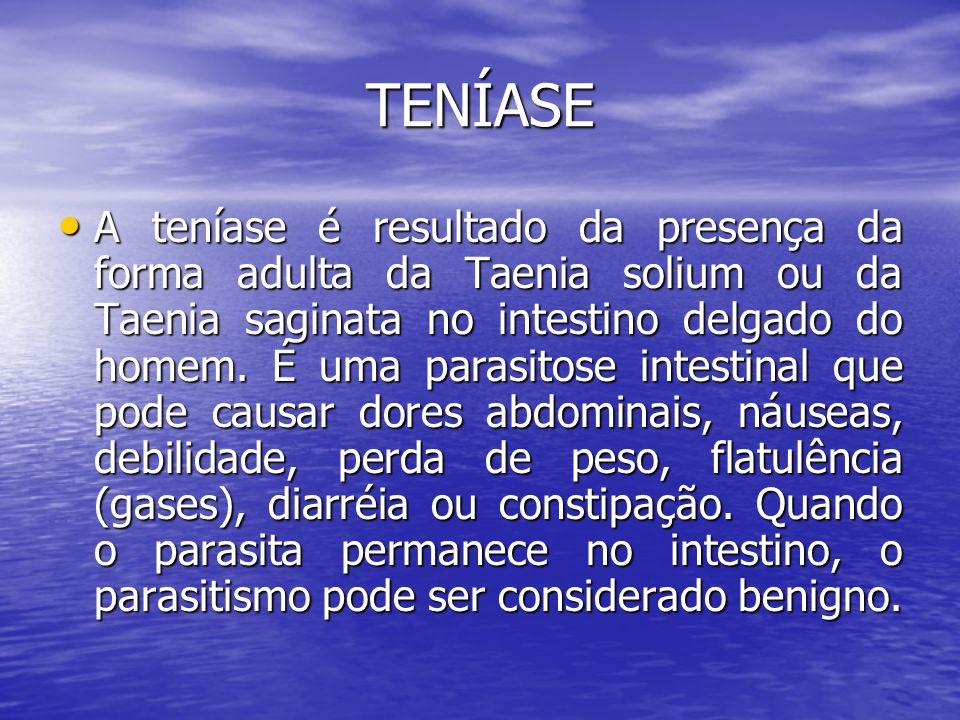 TENÍASE A teníase é resultado da presença da forma adulta da Taenia solium ou da Taenia saginata no intestino delgado do homem. É uma parasitose intes