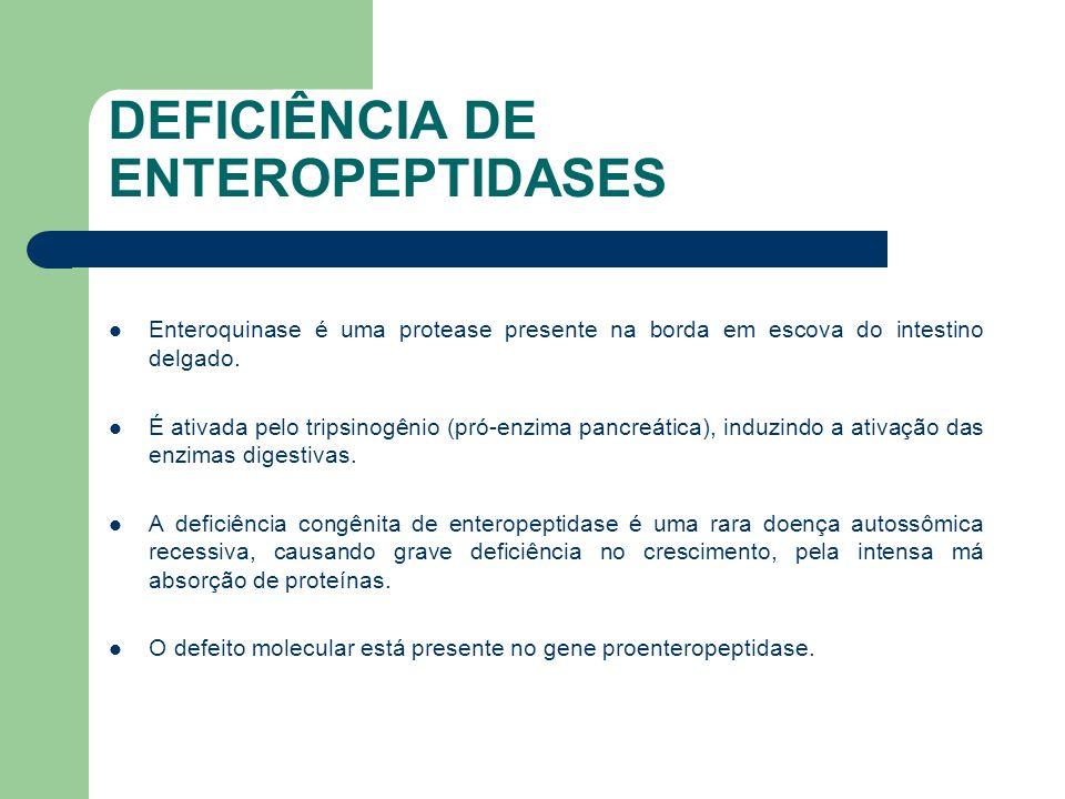 DEFICIÊNCIA DE ENTEROPEPTIDASES Deve-se alertar que a deficiência de enteropeptidase não é secundária a alterações morfológicas do intestino, como aquela observada na doença celíaca.