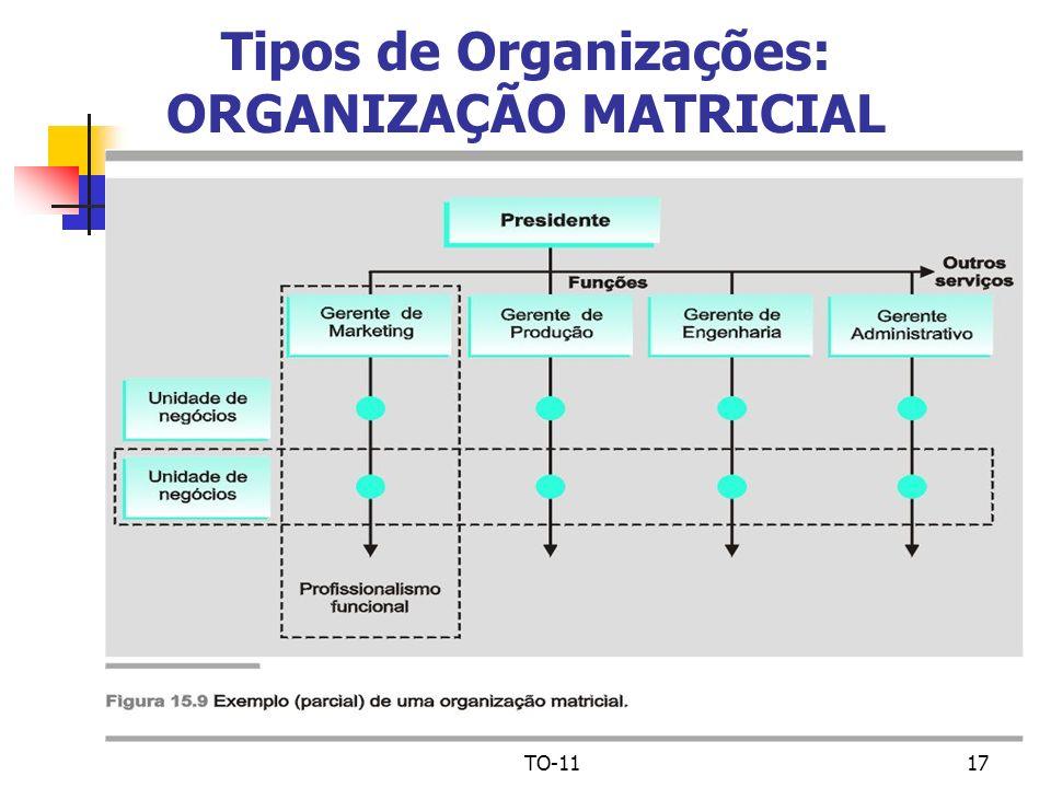 TO-1117 Tipos de Organizações: ORGANIZAÇÃO MATRICIAL