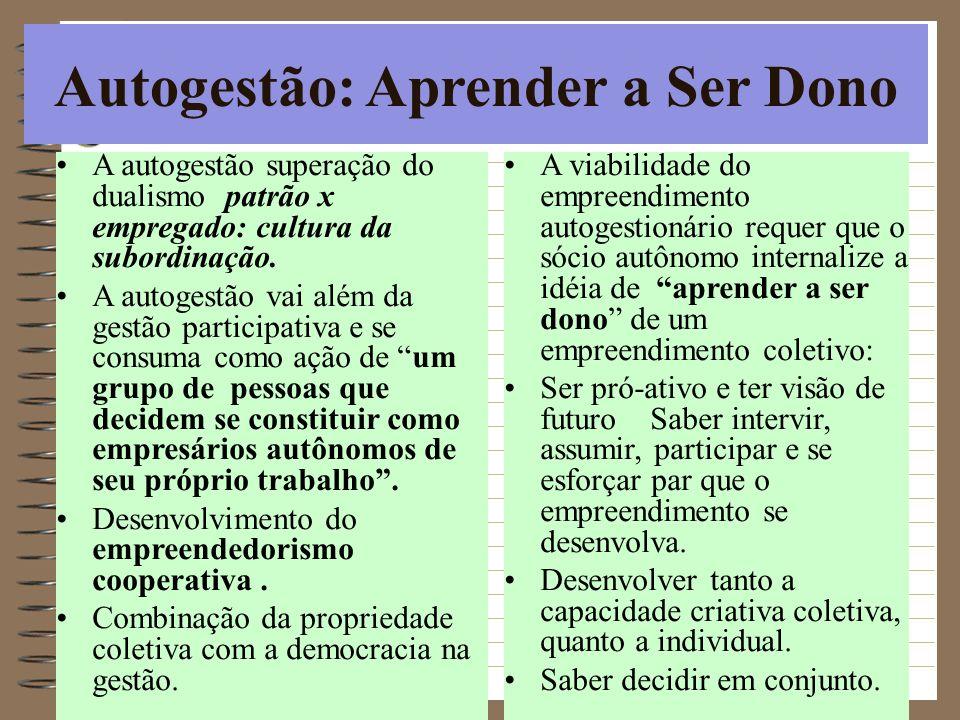 Autogestão: Aprender a Ser Dono A autogestão superação do dualismo patrão x empregado: cultura da subordinação. A autogestão vai além da gestão partic