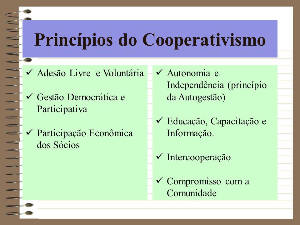 Princípios do Cooperativismo Adesão Livre e Voluntária Gestão Democrática e Participativa Participação Econômica dos Sócios Autonomia e Independência