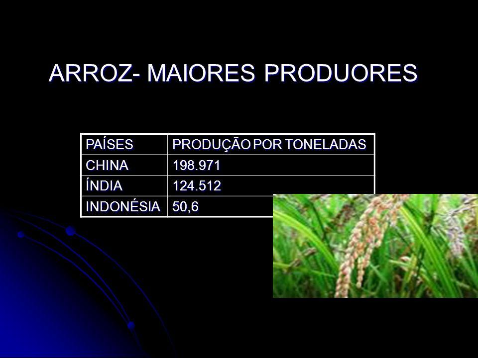 ARROZ- MAIORES PRODUORES ARROZ- MAIORES PRODUORES PAÍSES PRODUÇÃO POR TONELADAS CHINA198.971 ÍNDIA124.512 INDONÉSIA50,6