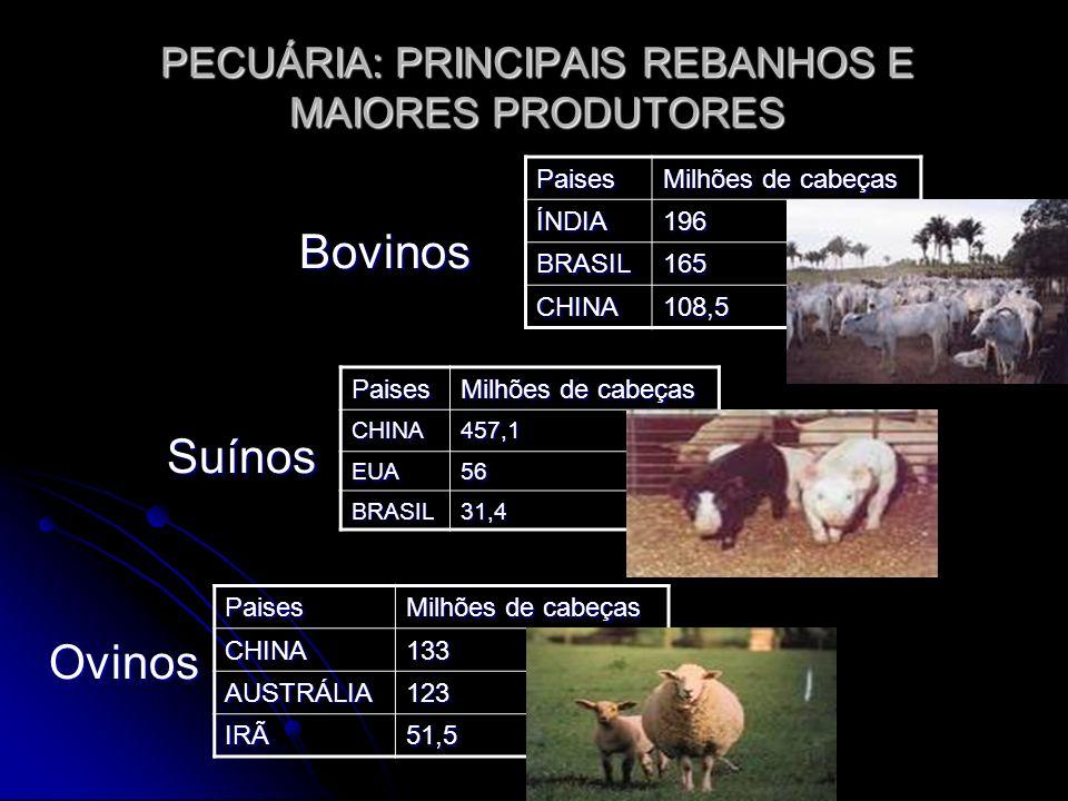 PECUÁRIA: PRINCIPAIS REBANHOS E MAIORES PRODUTORES Bovinos Bovinos Suínos SuínosOvinos Paises Milhões de cabeças ÍNDIA196 BRASIL165 CHINA108,5 Paises