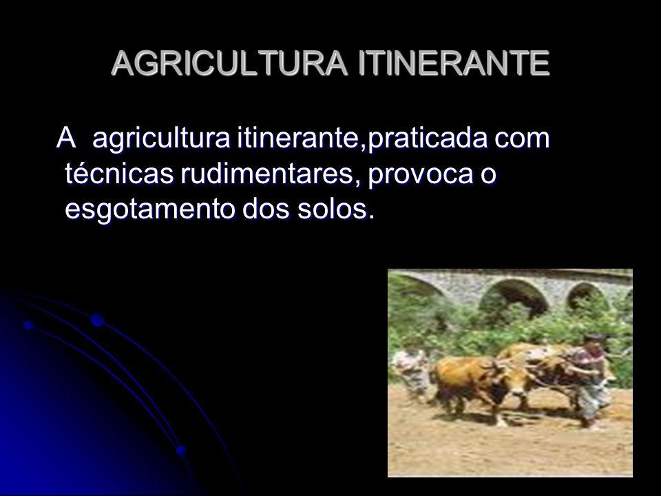AGRICULTURA ITINERANTE A agricultura itinerante,praticada com técnicas rudimentares, provoca o esgotamento dos solos. A agricultura itinerante,pratica